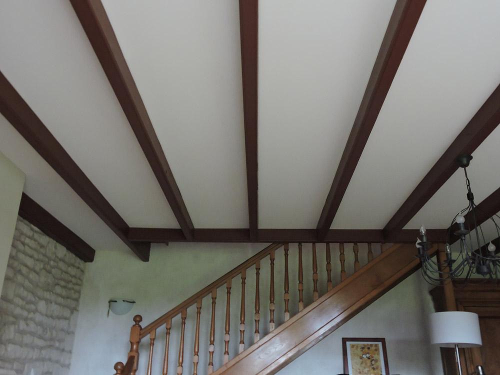 Plafond tendu Atelier Pro Peinture Pouillé - Secteur Fontenay-le-Comte